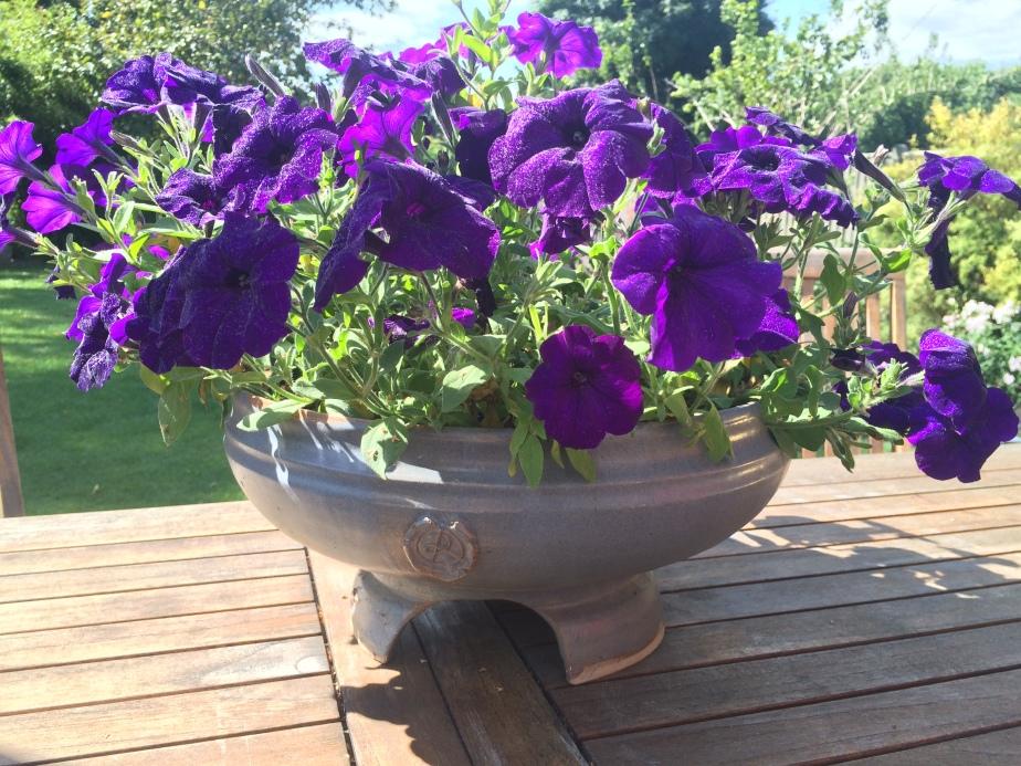 Garden Pots alsoavailable